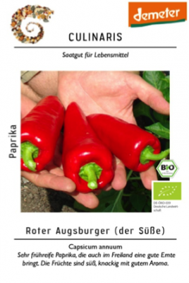 Roter Augsburger, Bio