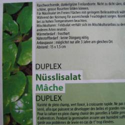 Duplex, Bio
