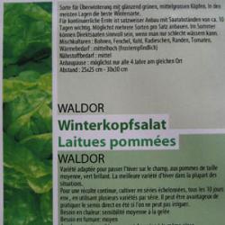 Valdor, Bio