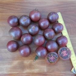 Cherry Black, Bio, Vorteilspack